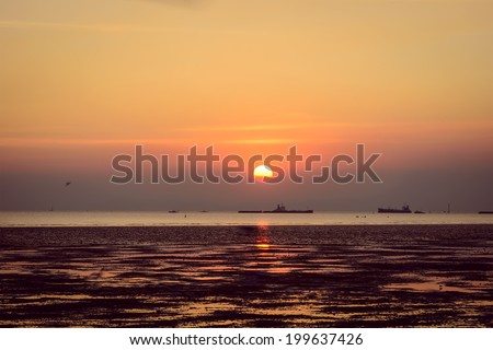 Scenic view of beautiful sunset sea in summer with cargo ship goldorange ,violet ,red ,cargo boat so far have seagull bird - stock photo
