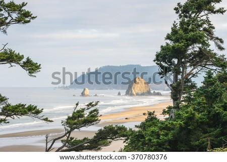 scenic view of big sea stack ,coast beach in the morning,Oregon,usa. - stock photo