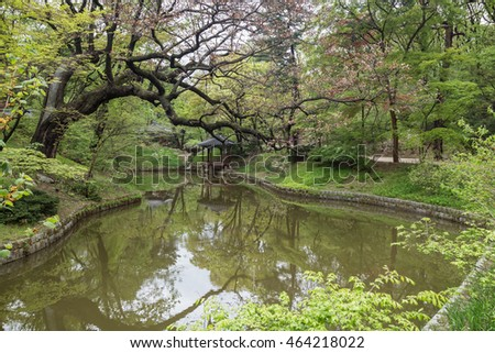 Scenic view of lush nature and a pond at Huwon (Secret Garden) at the Changdeokgung Palace in Seoul, South Korea.