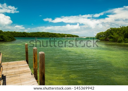 Scenic view of the Florida Keys with mangroves along the shoreline and a boat leaving the harbor. - stock photo
