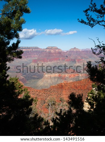Scenic view of the Grand Canyon framed by pine trees. - stock photo