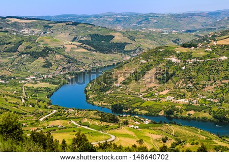 Scenic view of the vineyards on the banks of Douro river near Mesao Frio, Portugal - stock photo