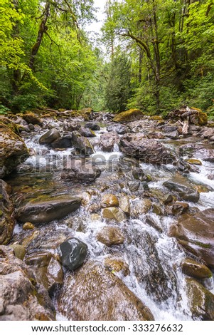 scenic view of water fall in mt Rainier national park area,Wa,Usa