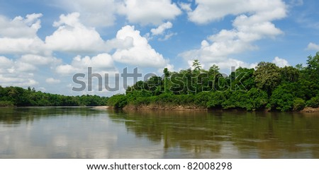 Scenic view of wild tropical jungle on the Mahakam river, East Kalimantan, Indonesia Borneo.