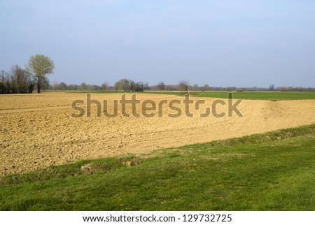 Scenic view on agricultural landscape