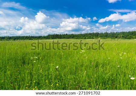 Scenic View Plain Nature  - stock photo