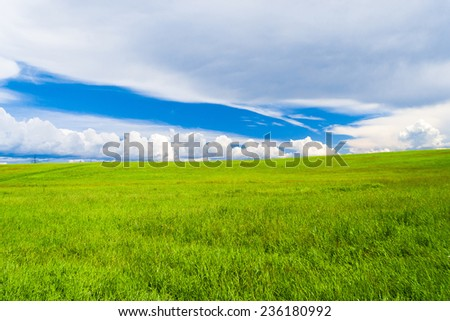 Scenic View Sunny Summertime  - stock photo