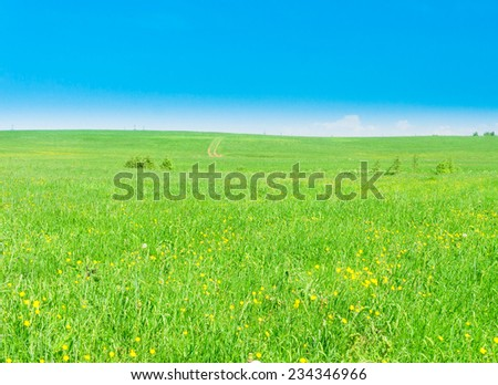 Scenic View Vibrant Nature  - stock photo