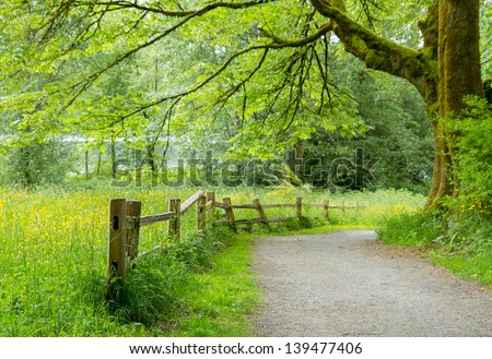 Scenic views along the trail in Deer Lake Park in Burnaby, Canada - stock photo