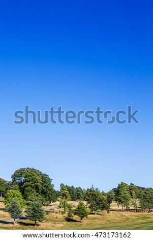 Scenic Views of a Golf Course in Surrey United Kingdom on a Hot Summers Day
