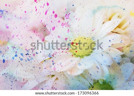 scenic watercolor artwork with white chamomile's flowers - stock photo