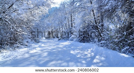 Scenic winter road through forest covered in snow after snowfall - stock photo