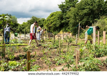 Scharnhausen, Germany - June 26, 2016: German volunteers were supporting African, Arabic and Asian refugees in setting up a small garden behind their refugee camp in Scharnhausen, Germany that is now - stock photo