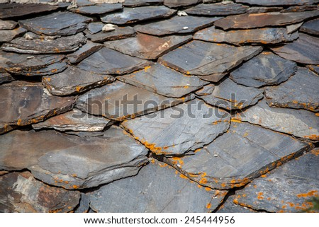 Schist Stock Photos Images Amp Pictures Shutterstock