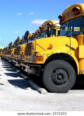 School buses. - stock photo