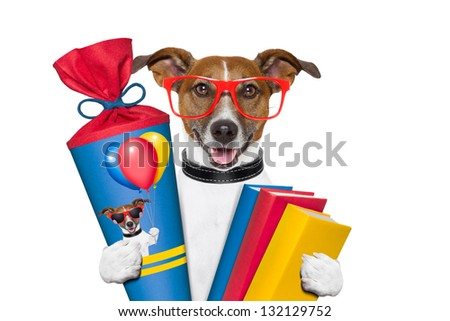 school dog with books and school cone
