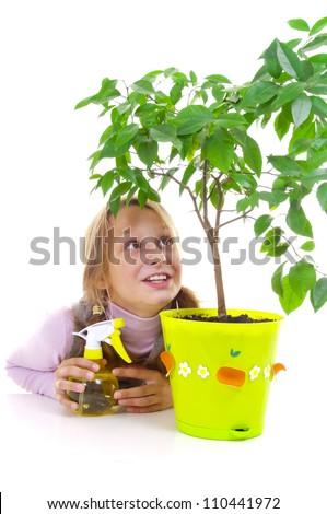 Schoolgirl and the tangerine tree in the green pot - stock photo