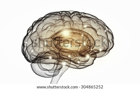 Science image with human brain on white background - stock photo