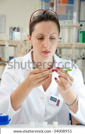 Scientist holding a green leaf in pincers - stock photo