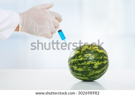 Scientist injecting chemicals into a watermelon. Close up - stock photo