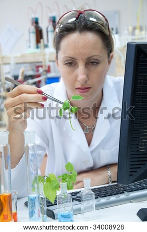 Scientist looking agricultural sample - stock photo