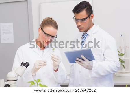 Scientists examining leaf of plants in the laboratory - stock photo
