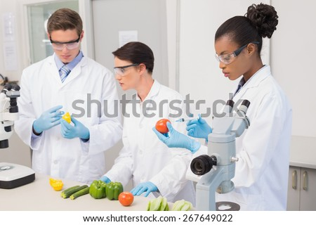 Scientists examining vegetables in laboratory - stock photo