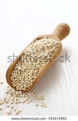 Scoop with uncooked quinoa seed grain on white wooden background - stock photo