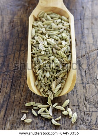 Scoopful of fennel seeds - stock photo