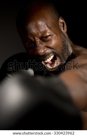 Screaming Boxer Throwing a Punch