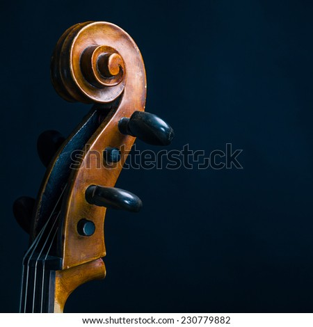 scroll Cello - stock photo
