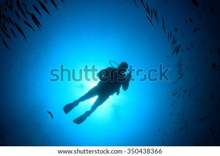 Scuba diver diving in ocean silhouette  - stock photo
