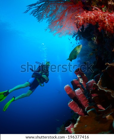 Scuba diver exploring tropical reef wall on the depth - stock photo