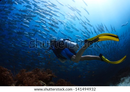 Scuba diver finning towards school of Jack fish in a tropical sea - stock photo