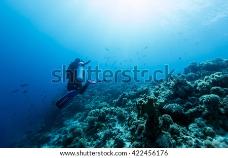 Scuba diver in tropical coral reef, Layang Layang.