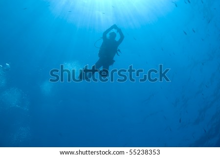 Scuba diver silhouette with sunrays and blue background. Paradise, Sharm el Sheikh, Red Sea, Egypt. - stock photo