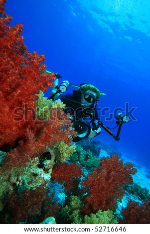 Scuba Diver with camera and beautiful Soft Corals at Ras Mohamed National Park, Egypt - stock photo