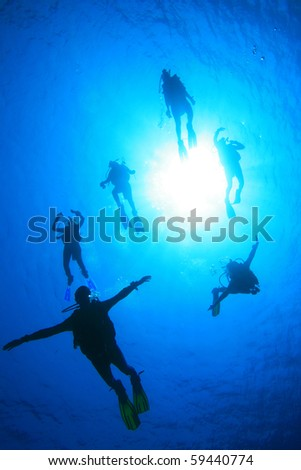 Scuba Divers in clear blue water, silhouetted against sun - stock photo