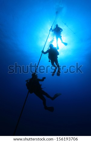 Scuba divers on decmpression stop in the blue water  - stock photo