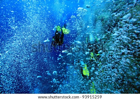 Scuba divers on the reef