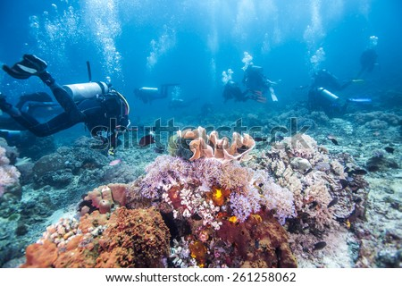 Scuba Divers passing through colorful tropical coral reef with fishes. - stock photo