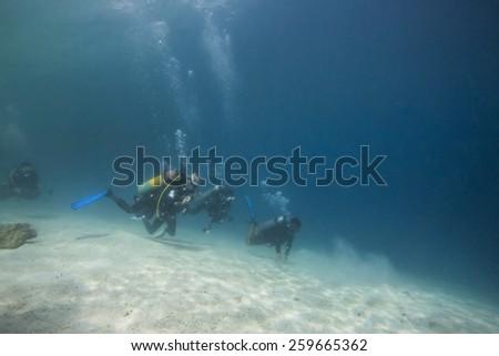 Scuba Divers passing through sandy bottom tropical sea - stock photo