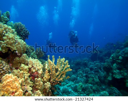 Scuba Divers returning from a dive in Maui Hawaii - stock photo