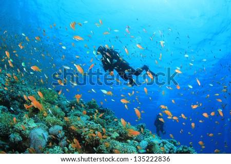 Scuba Divers underwater exploring coral reef in ocean - stock photo