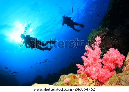 Scuba diving on coral reef in ocean - stock photo