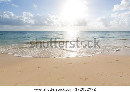 sea - stock photo