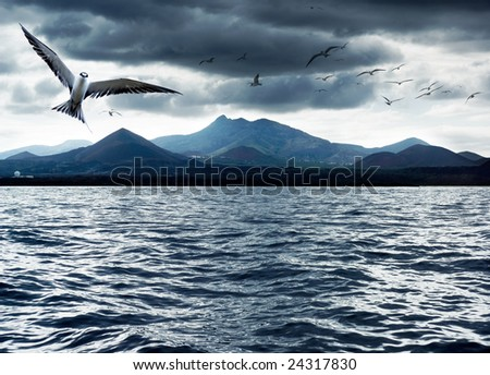 Sea birds with volcanic island in the background - stock photo