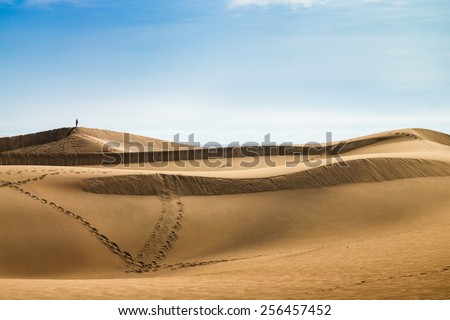 Sea coast. Sand dunes. People on the horizon. Canary islands, Maspalomas. - stock photo