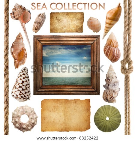 sea collection - stock photo