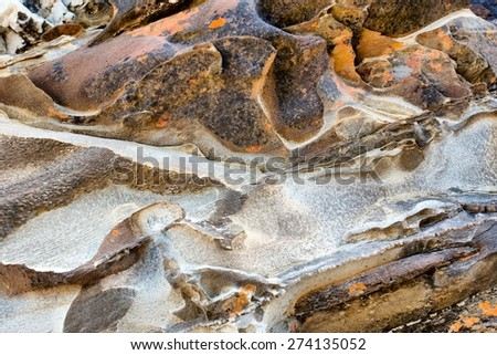 Sea-eroded rock - texture. Shot in the Tsitsikamma National Park, Garden Route area, Western Cape, South Africa.  - stock photo